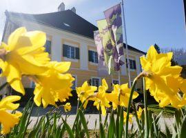 Frühling im Lindenhof