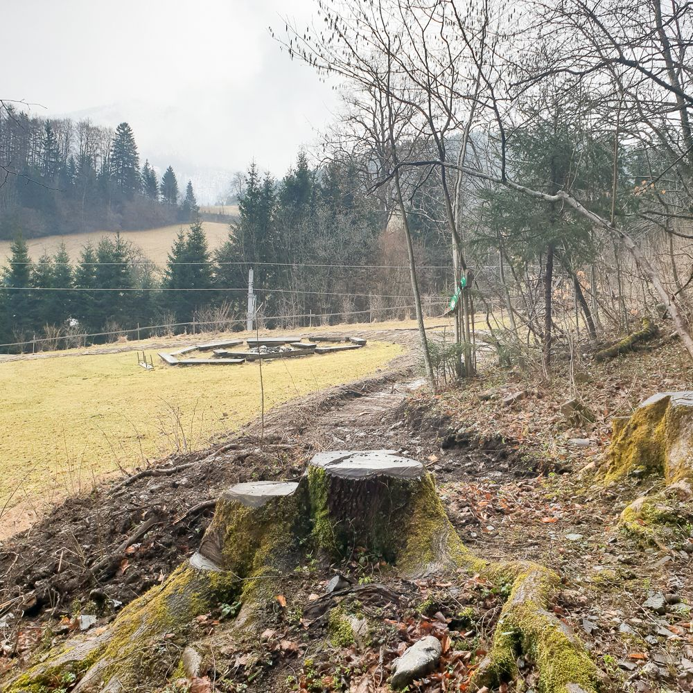 Lindenhof - Singletrail